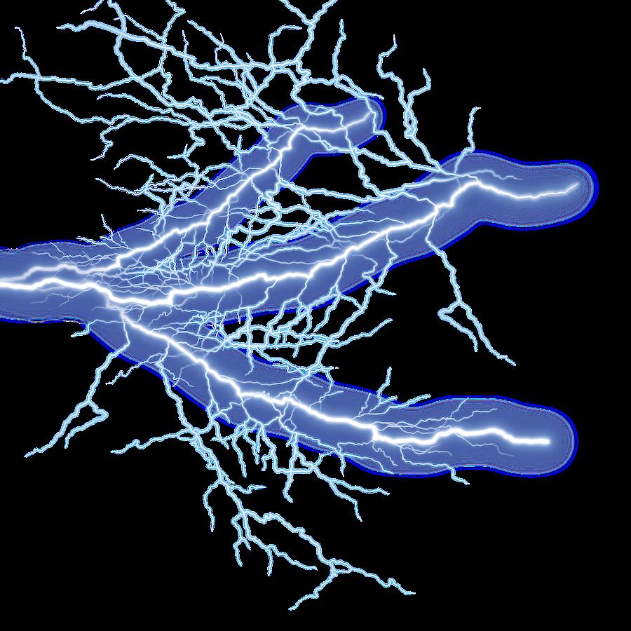 lightning-png-transparent-4 • Elevated